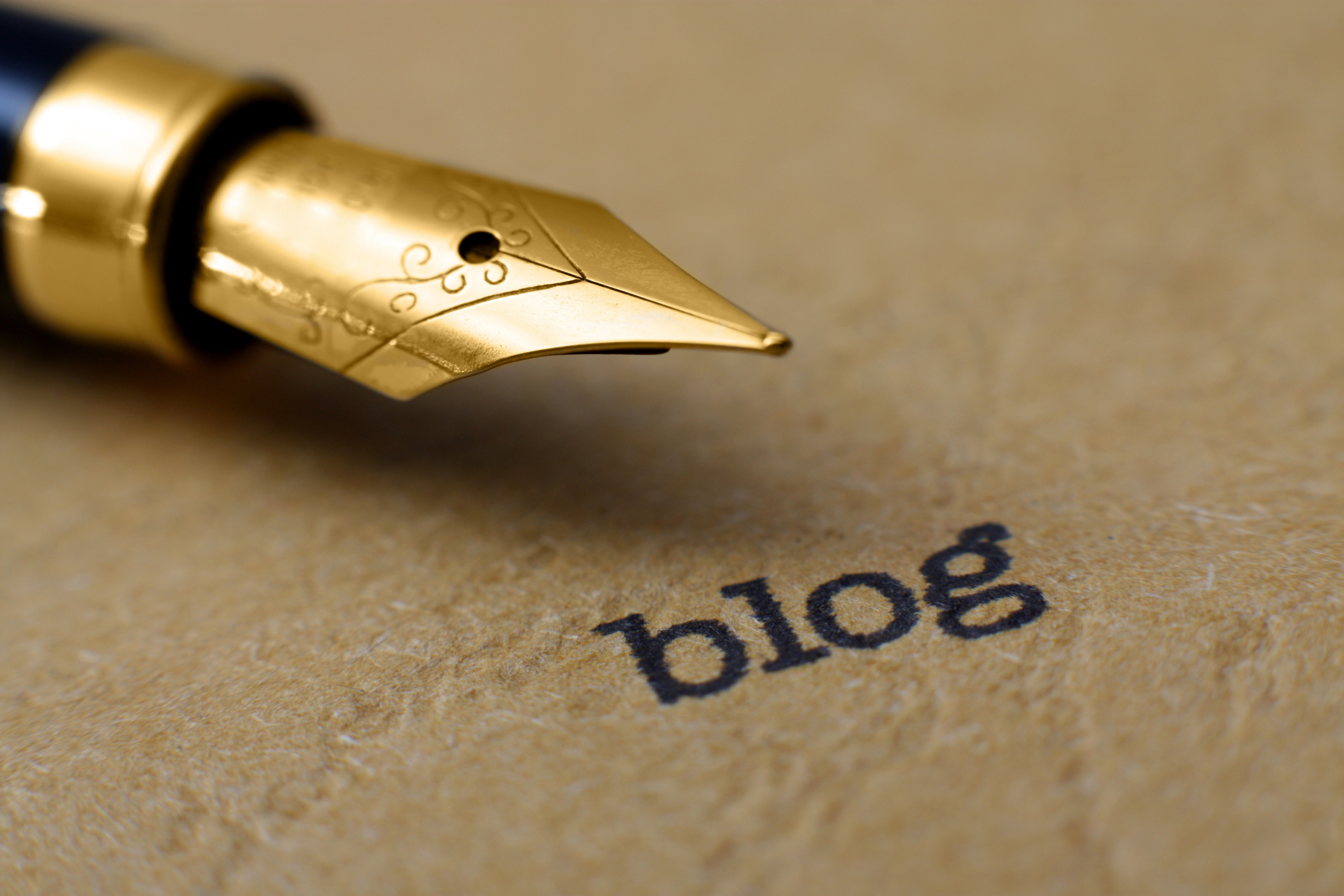 BEC Member's Blog